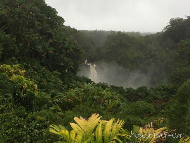 honomu men Get directions, maps, and traffic for honomu, hi check flight prices and hotel availability for your visit.